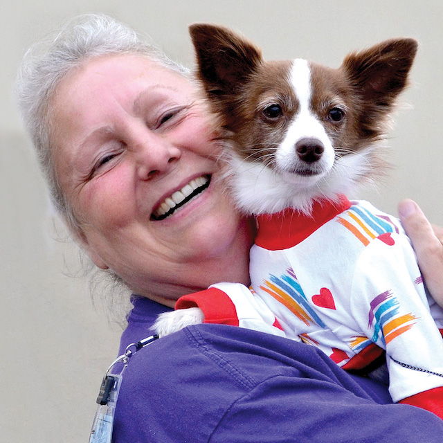 Homeless Pets Get Vital Services with Pets without Walls