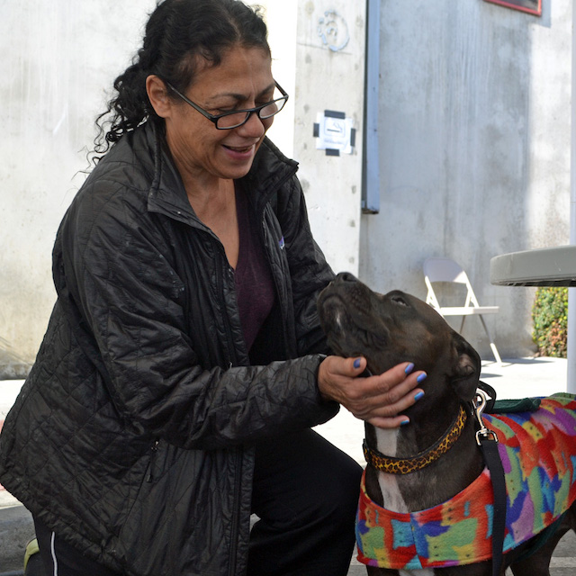 Homeless Pets Get Vital Services
